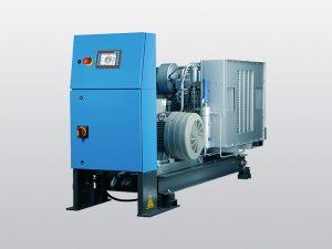 35 – 40 bar, air & nitrogen (DS-series)